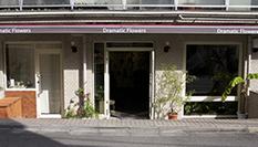 劇的花屋のアトリエ写真